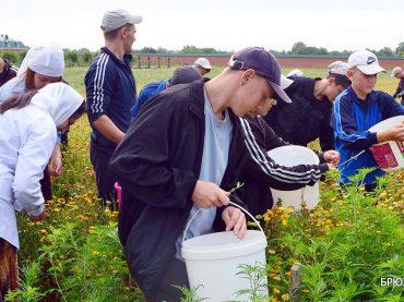 Волонтерское движение в Переясловской спецшколе отмечает юбилей