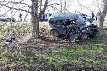 В Чепигинской внедорожник врезался в дерево