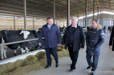 «40% кубанского молока производят в центральной зоне»: в Брюховецкой обсудили вопросы развития АПК