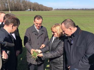 Вениамин Кондратьев в преддверии посевного сезона оценил состояние полей Брюховецкого района