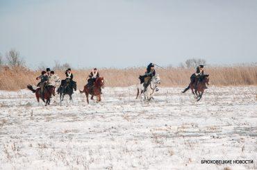 На Казачьем острове хотят открыть конную базу