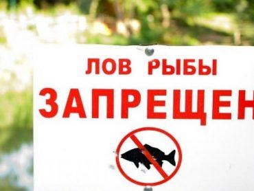 Запрещена рыбалка в Бейсугском, Ейском и Ахтарском лиманах