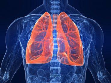 Бронхиальная астма — не приговор: 30 мая — День борьбы против астмы и аллергии