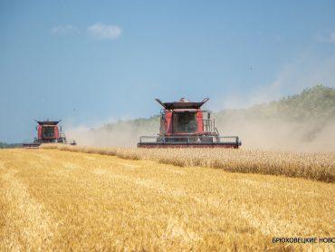 Краснодарский край собрал рекордный урожай зерна