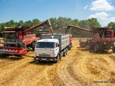 Хлебную страду преодолели успешно. «Урожай 21 век» одним из первых завершило уборку