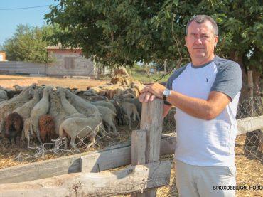 Грант на развитие семейной фермы получил чепигинский фермер