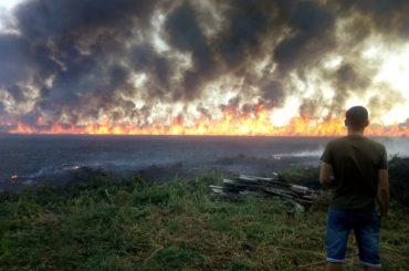 Пожары в Брюховецкой: что и когда горело