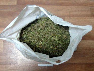Полицейские выявили незаконное хранение наркотиков