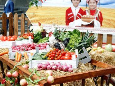 Популярность аграрного туризма в Краснодарском крае в 2019 году выросла на десять процентов по сравнению с прошлым годом — Кондратьев