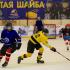 На Кубани организуют хоккейный турнир имени А. В. Тарасова