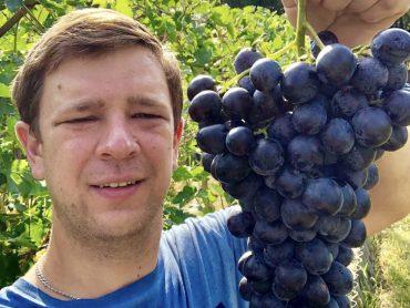 Сладкую ягоду вырастят вместе: среди получателей краевого гранта и супруги Федоренко