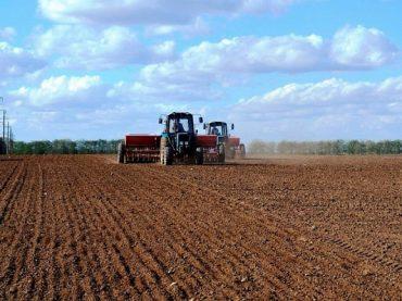 Аграрии Кубани уже завершили сев сахарной свеклы на 96%