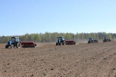 Аграрии живут заботой о завтрашнем дне: весенние полевые работы в самом разгаре