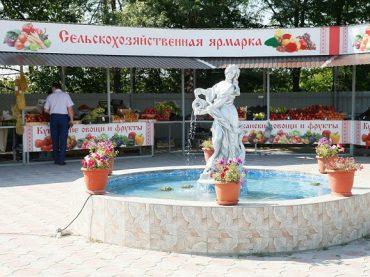 Во всех районах Кубани отрыто порядка 350 продовольственных ярмарок и рынков