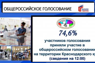 Жители Брюховецкого района активно принимают участие в голосовании по поправкам в Конституцию РФ