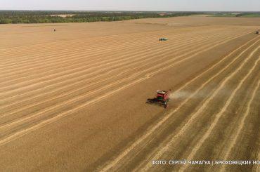 Брюховецкие аграрии убирают главную зерновую культуру