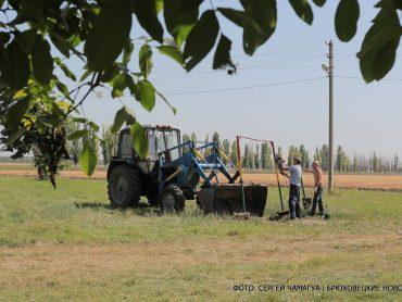 В  Бейсугском благоустроят парковую зону: Новоджерелиевское поселение стало победителем краевого конкурса местных инициатив
