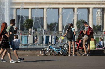Новые правила для оформления ОСАГО и проведения процедуры банкротства. Чего ждать россиянам в сентябре 2020 года?