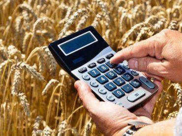 Аграрии Кубани могут получить отсрочку платежей по льготным кредитам