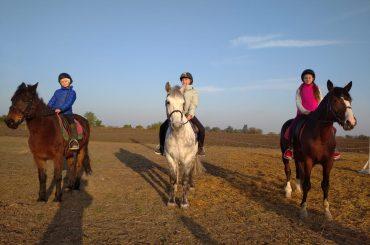 Команда конно-спортивного клуба станицы Брюховецкой  стала лучшей на чемпионате и первенстве России по вольтижировке