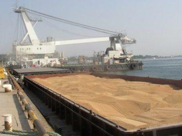 В прошлом году Кубань увеличила экспорт зерна через порты на 36%