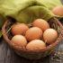 Минсельхоз объяснил подорожание куриных яиц