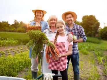 Нуждающиеся семьи смогут использовать соцконтракт для развития личного хозяйства