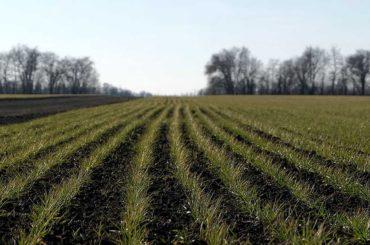 Придут ли февральские «окна»: рассказываем как  готовятся брюховецкие аграрии к весенним полевым работам